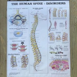 1984 The Human Spine - Disorders Medical Poster